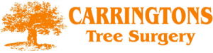 Carringtons Tree Surgery