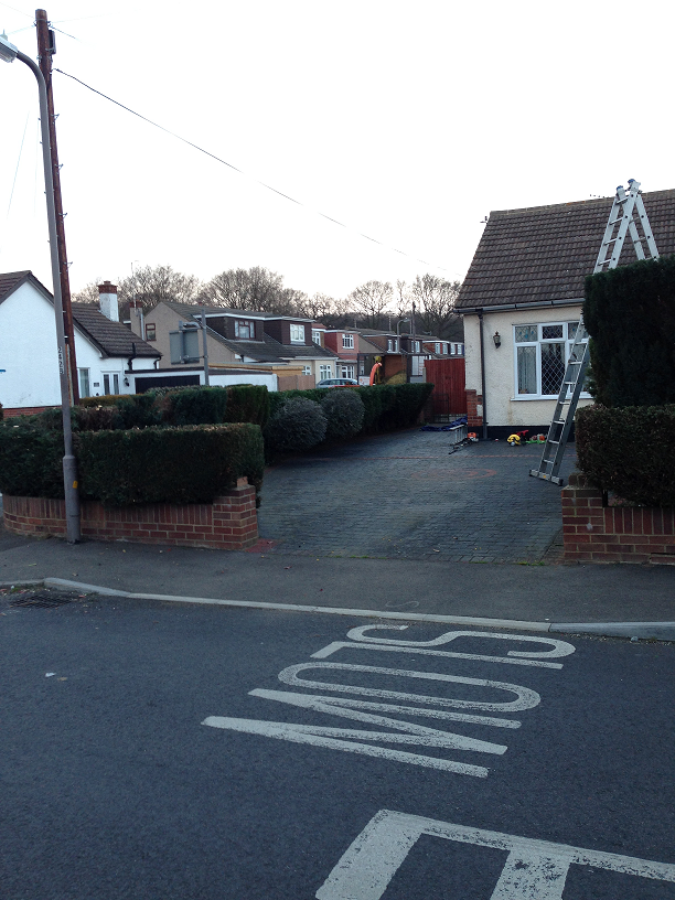 reduction of hedge and shrubs
